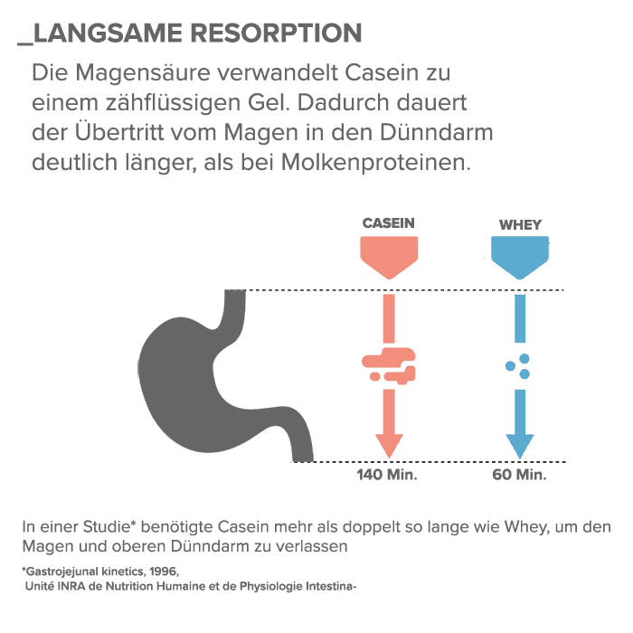 02_Langsame-Resorption