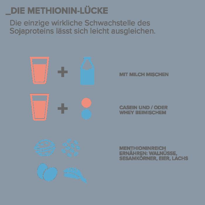 07_Die-Methionin-Luecke