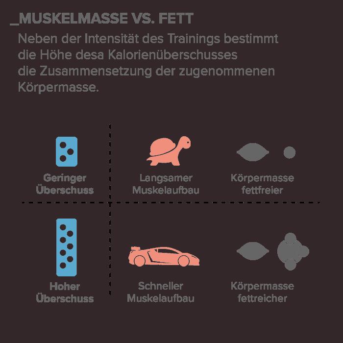 02_Muskelmasse-vs-Fett