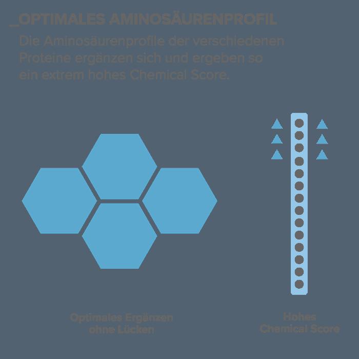 03_Optimales-Aminosaeurenprofil