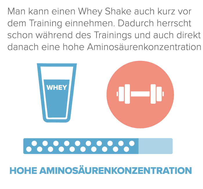 Whey Protein vor dem Training