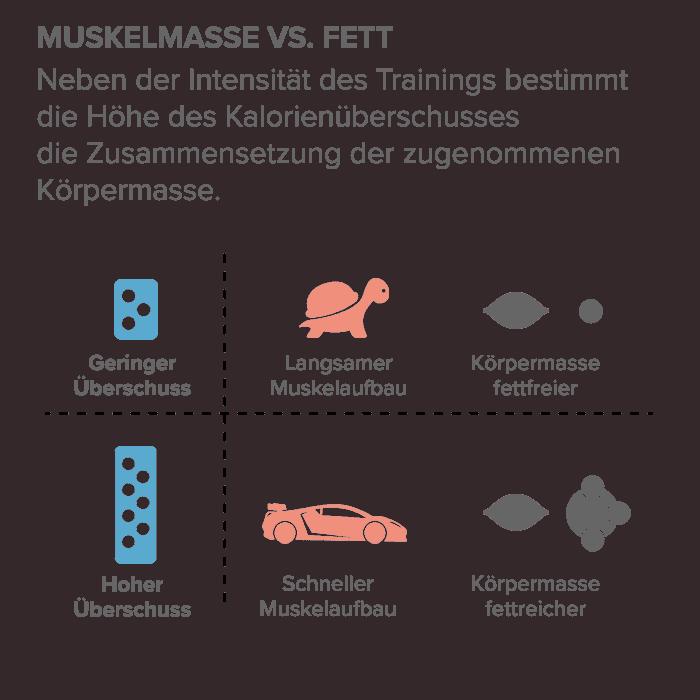 Muskelmasse vs. Fett