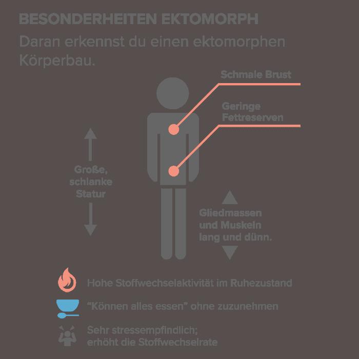 Besonderheiten Ektomorph