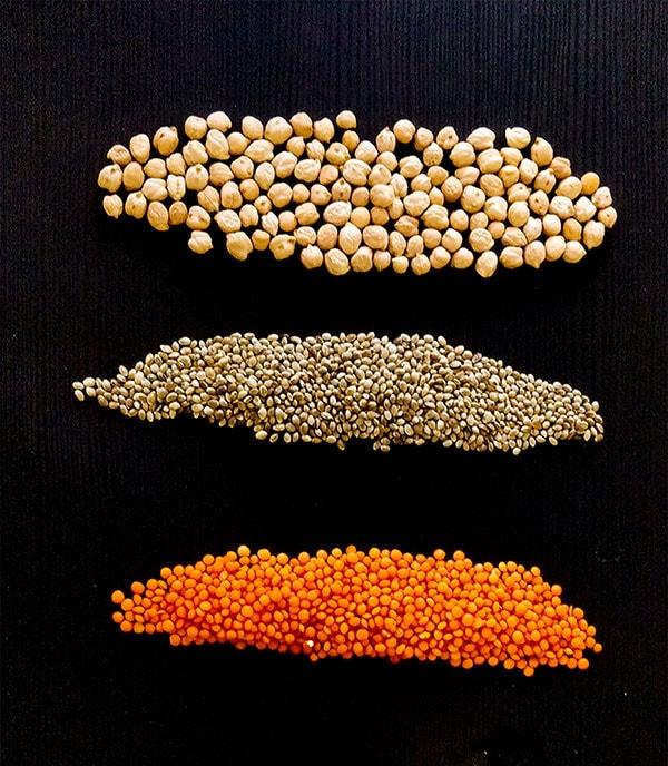Veganes Protein